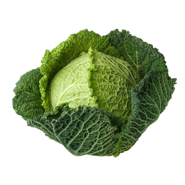 cabbage from caterfish