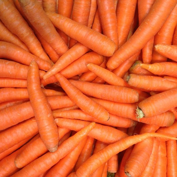 Carrots from Caterfish