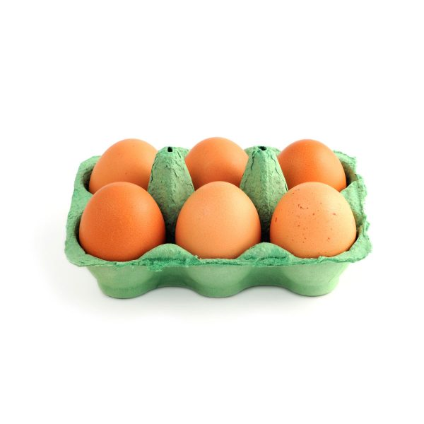 Eggs from Caterfish